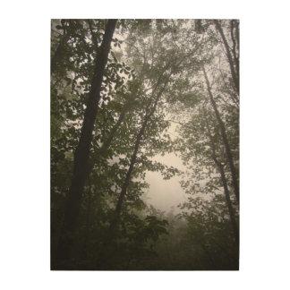 Nebelige pazifische Hartriegel-Waldungs-Fotografie Holzdruck
