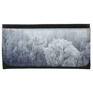 Nebelige Winter-Landschaft mit Schnee bedeckte
