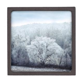 Nebelige Winter-Landschaft mit Schnee bedeckte Kiste