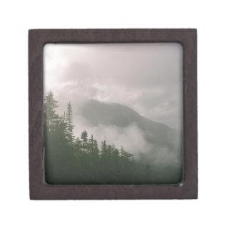 Nebeliger Wald Kiste