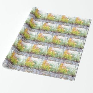 Nebenfluss - Fall Geschenkpapier