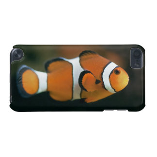 Nemo iPhone iPod-Touch-Fall iPod Touch 5G Hülle