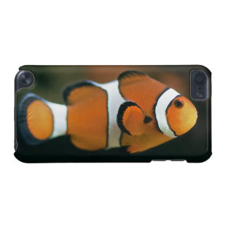 Nemo iPod Touch-Speck-Kasten iPod Touch 5G Hülle