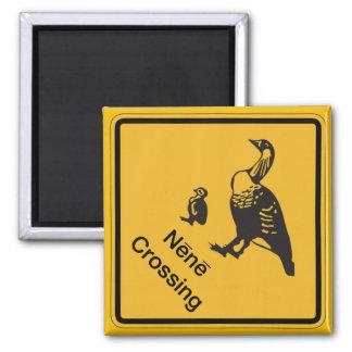 Nene Überfahrt, handeln Warnzeichen, Hawaii, USA Quadratischer Magnet