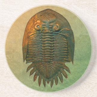 Neometacanthus versteinerter Trilobite Untersetzer