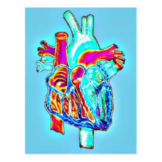 Neonhand gezeichnetes anatomisches Herz Postkarte