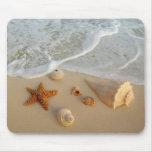 Neptun Geschenke (Muscheln) Mauspad