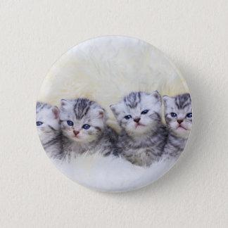 Nest mit vier jungen Tabbykatzen in Folge Runder Button 5,7 Cm