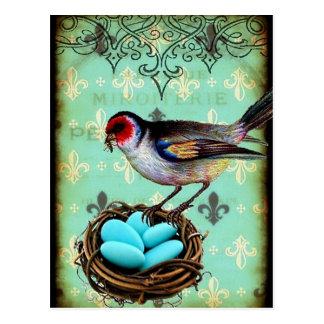 Nest-Shabby Chic-Postkarte Fleur Di Lis Bird Postkarte