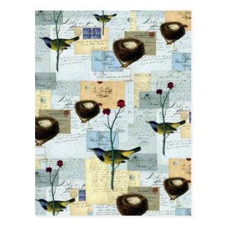 Nester und Vögelchen - Postalisch Postkarte