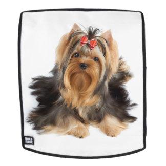 Netter Hund Rucksack