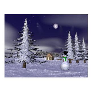 Netter Schneemann in der Nacht Postkarten