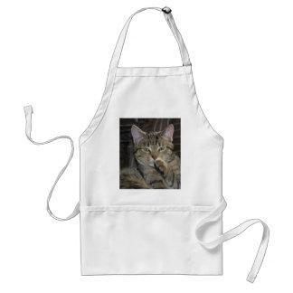 Nettes Miezekatze-Katzen-Denken Schürze
