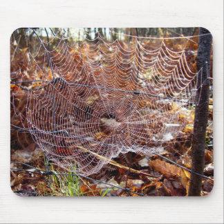 Netz der europäischen Garten-Spinnen-Mäusematte Mousepads