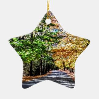 Neu-England Fall Keramik Stern-Ornament