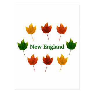 Neu-England Herbstlaub Postkarte