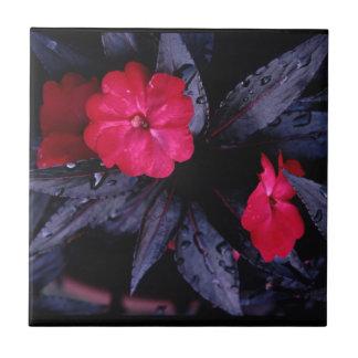 Neu-Guinea Impatiens Keramik-Fliese Keramikfliese