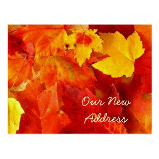 Neue Adressen-Herbst-Postkarte Postkarte