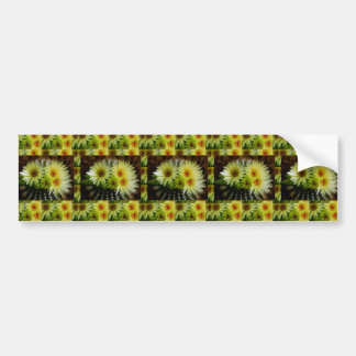 NEUE Blick KAKTUS-KAKTEEN Blumen-Show: Grüße Autoaufkleber