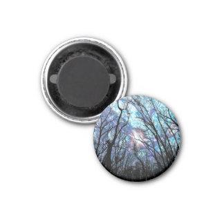 Neuer 4 Knopf-Magnet Runder Magnet 3,2 Cm