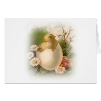 Neues Ostern-Küken Grußkarte