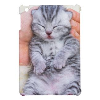 Neugeborenes Katzenlügen schläfrig in der Hand auf iPad Mini Hülle