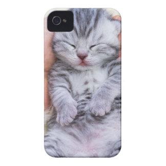Neugeborenes Katzenlügen schläfrig in der Hand auf iPhone 4 Hüllen