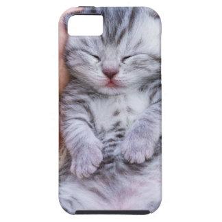 Neugeborenes Katzenlügen schläfrig in der Hand auf iPhone 5 Etui