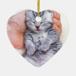Neugeborenes Katzenlügen schläfrig in der Hand auf Keramik Herz-Ornament