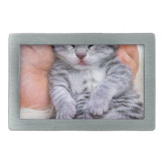 Neugeborenes Katzenlügen schläfrig in der Hand auf Rechteckige Gürtelschnalle