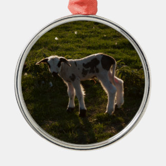 Neugeborenes Lamm Rundes Silberfarbenes Ornament