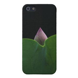 Neugeborenes Lotus iPhone 5 Etuis