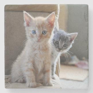 Neugierige Kätzchen Steinuntersetzer