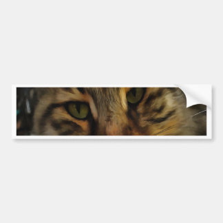 Neugierige Katze Autoaufkleber