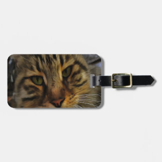 Neugierige Katze Gepäckanhänger