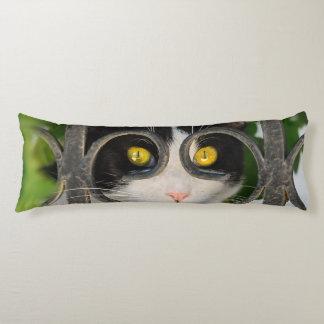 Neugierige Katze mit dem Schauspiel-Feld lustig - Seitenschläferkissen