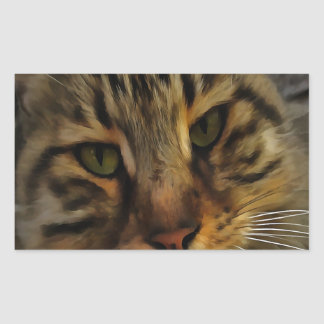 Neugierige Katze Rechteckiger Aufkleber