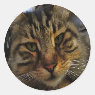 Neugierige Katze Runder Aufkleber