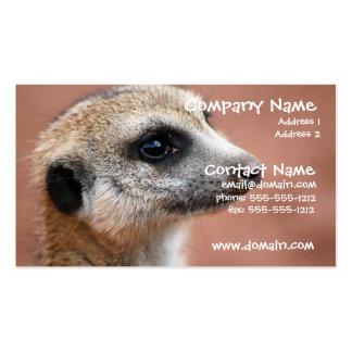 Neugierige Meerkat Visitenkarte