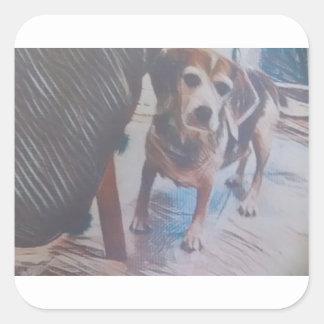 Neugieriger Beagle Quadratischer Aufkleber