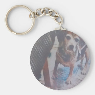 Neugieriger Beagle Schlüsselanhänger