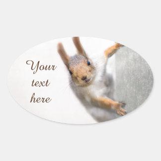 Neugieriges Eichhörnchen Ovaler Aufkleber