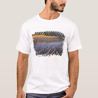 Neuseeland, Nationalpark Abel Tasmans, Küste 2 T-Shirt