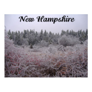 New Hampshire-Winter-Eis Postkarte