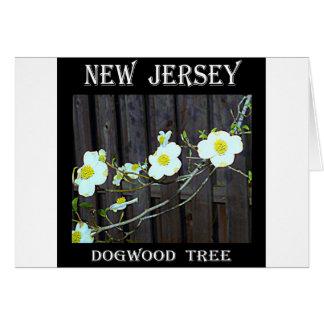 New-Jersey Hartriegel Karte