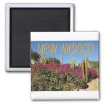 New Mexiko