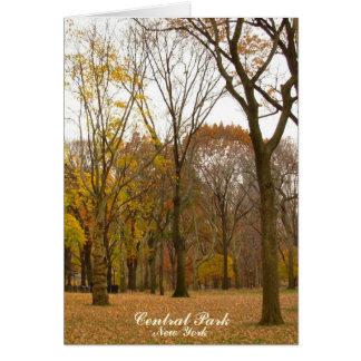 New- Yorkkarten-Central Park-New- Karte