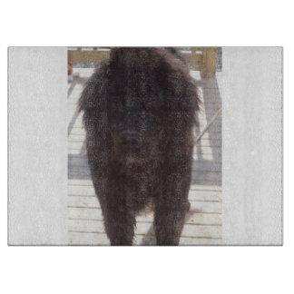 Newfoundland_puppy_muddy Schneidebrett