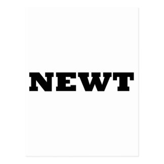 Newt Postkarte
