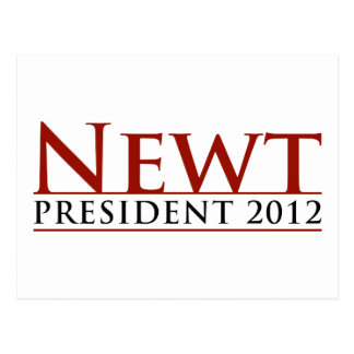 Newt-Präsident 2012 Postkarte